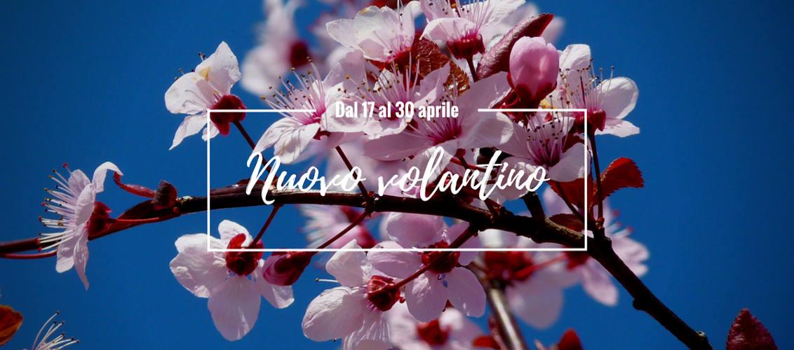 Aprile 2017, Avellino, Benevento, Concessionario Parmalat, Ingrosso alimentari, Pasqua 2017, Rivenditore Parmalat, Volantino, Volantino LogiS.S.
