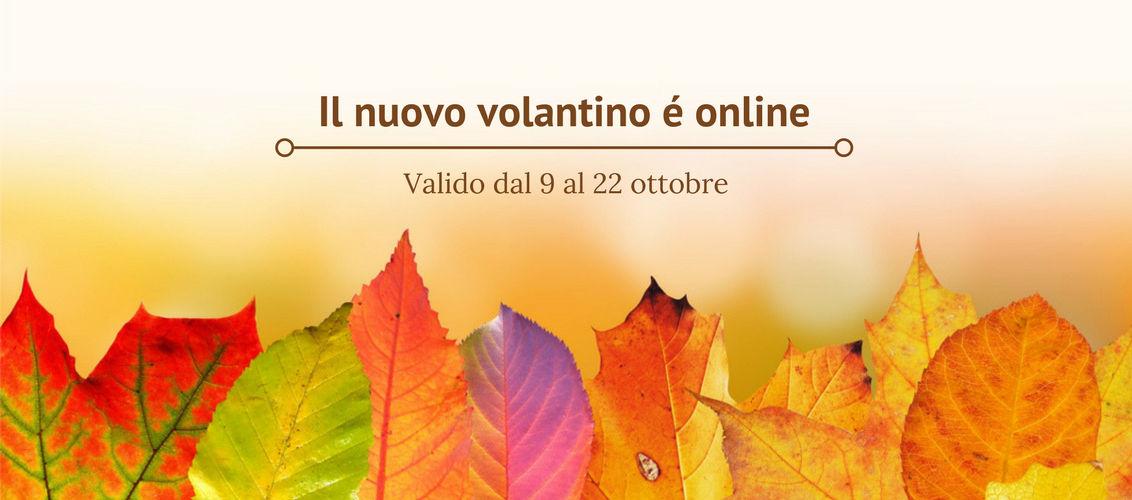 Volantino LogiSS 09.10.2017
