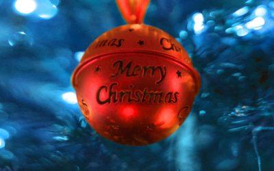 Buon Natale, con il nuovo volantino LogiSS!